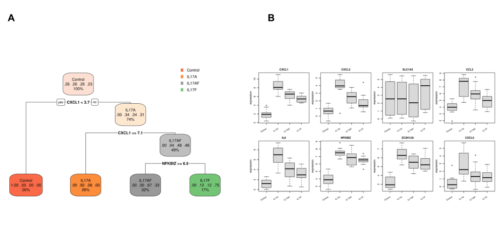 Figure 10. Biomarkers discovery. A: One of the possible decision trees for identifying biomarkers distinguishing the various sample groups in the dataset. B: Expression boxplots of the potential biomarker genes identified by the platform.