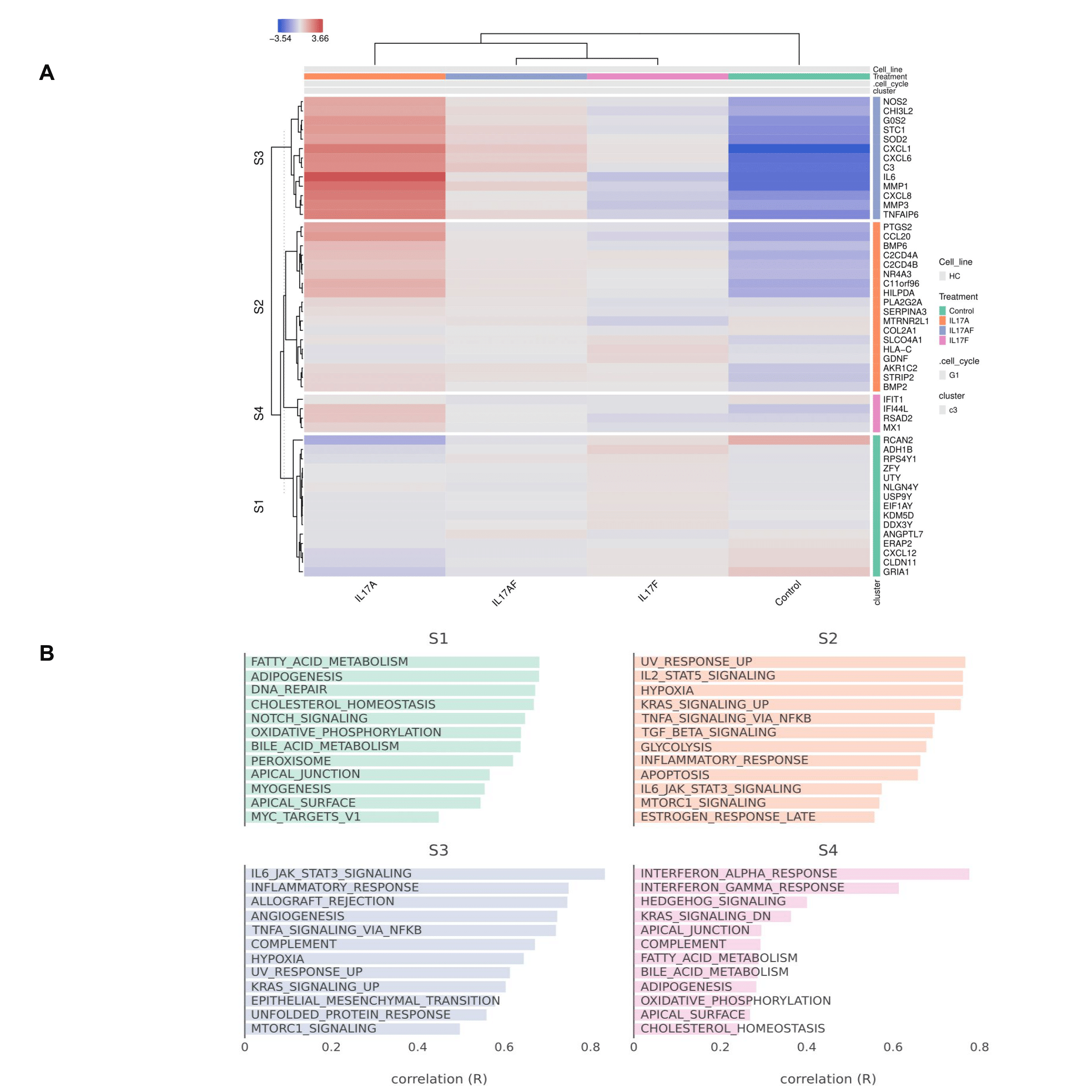 Figure 2. Clustered heatmap of the HC cell type samples grouped by treatment. Genes are divided into four main clusters (S1-4).