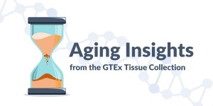 Aging Insights from the GTEx Tissue Collection